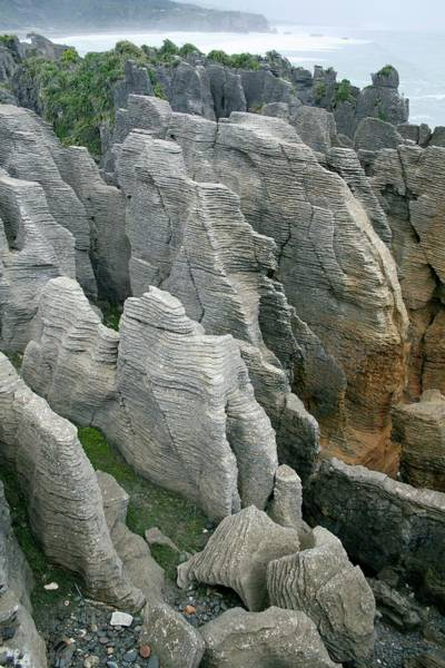 Eroded Photograph - The Pancake Rocks Of Punakaiki by Chris Martin-bahr/science Photo Library