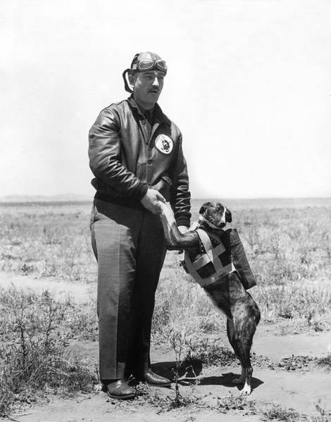 Army Air Corps Photograph - The Parachute Pup by Underwood Archives