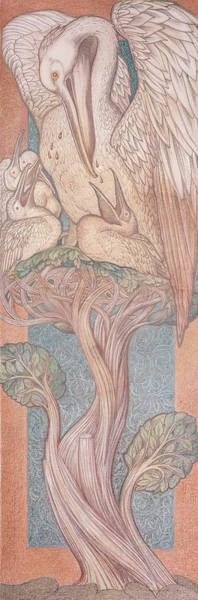 Bird Feeding Photograph - The Pelican, Cartoon For Stained Glass For The William Morris Company, 1880 Coloured Chalk On Paper by Sir Edward Coley Burne-Jones