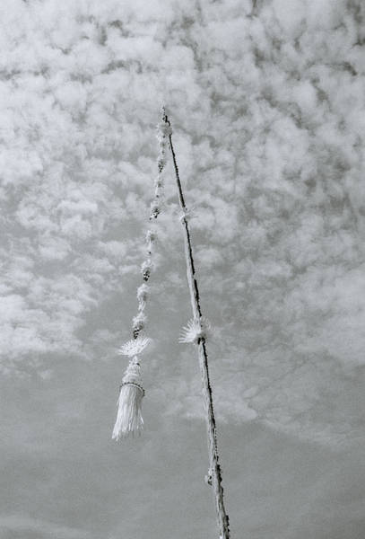Photograph - The Penjor by Shaun Higson