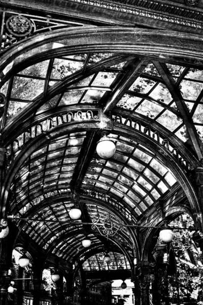 Photograph - The Pergola Ceiling by David Patterson