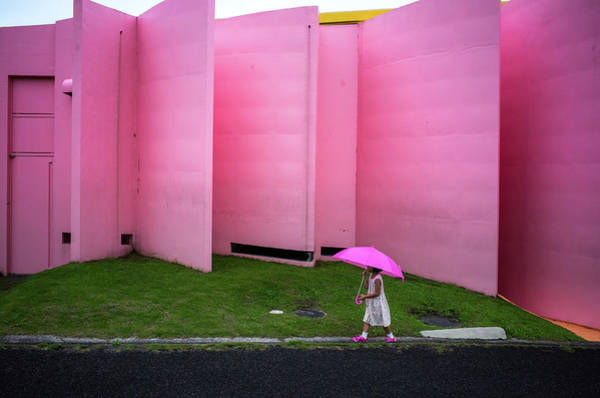Wall Art - Photograph - The Pink Color World by Tetsuya Hashimoto