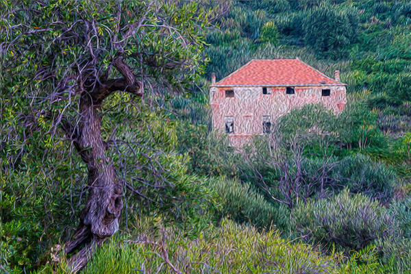 Photograph - The Pink Fortress House In The Wood by Enrico Pelos