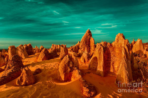 Photograph - The Pinnacles Desert by Julian Cook