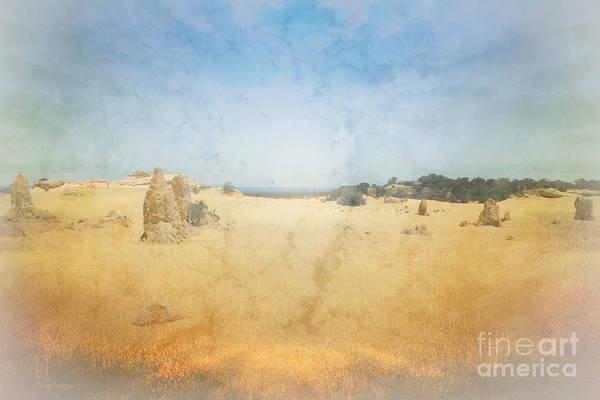 Photograph - The Pinnacles In Western Australia by Elaine Teague