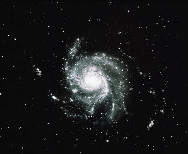 Pinwheel Photograph - The Pinwheel Galaxy M101 by Noao/science Photo Library