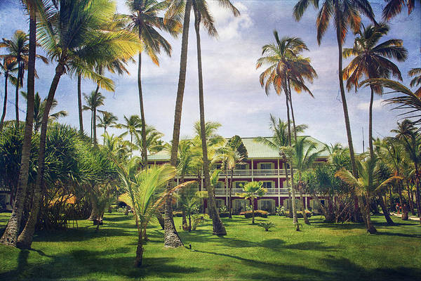 Cana Island Wall Art - Photograph - The Plantation by Laurie Search