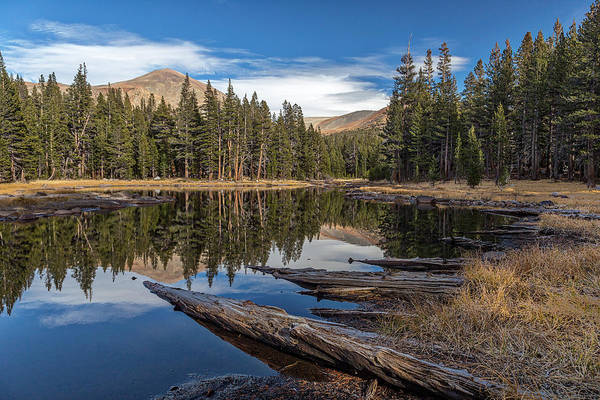 Big Pine Wall Art - Photograph - The Pond At Dana Meadow by Peter Tellone