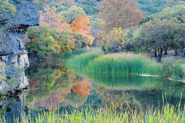 Raccoon Photograph - The Pond At Lost Maples State Natural Area - Texas Hill Country by Silvio Ligutti