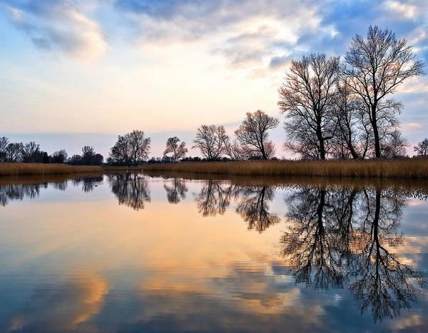 Photograph - Ponds In Lomna by Tomasz Dziubinski