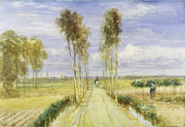 Poplar Painting - The Poplar Avenue by David Cox