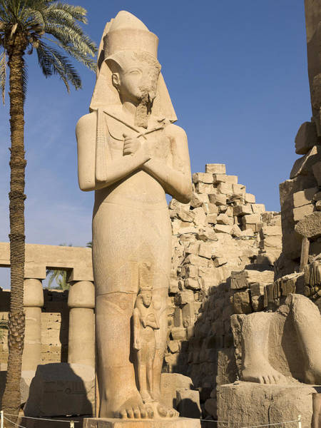Photograph - The Power And Glory Of Egypt by Brenda Kean