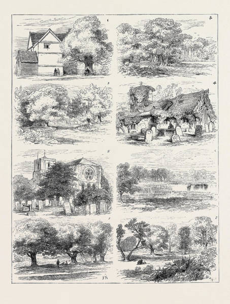 Epping Wall Art - Drawing - The Preservation Of Epping Forest 1. Queen Elizabeths Lodge by English School