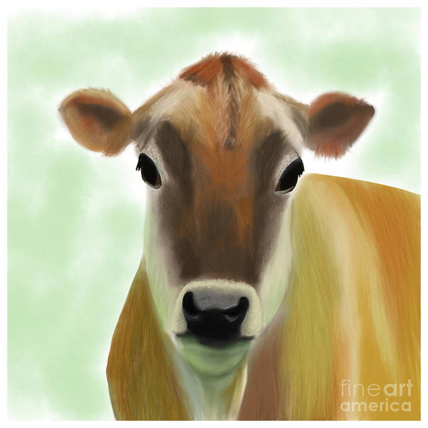 Painting - The Pretty Jersey Cow  by Barefoot Bodeez Art