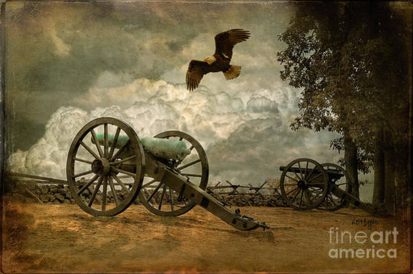 Flying Eagle Photograph - The Price Of Freedom by Lois Bryan