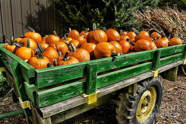 Photograph - The Pumpkin Cart by Mark Miller