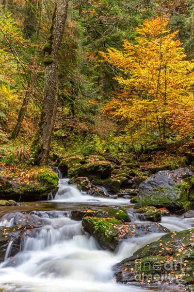 Photograph - Cascades And Waterfalls by Bernd Laeschke