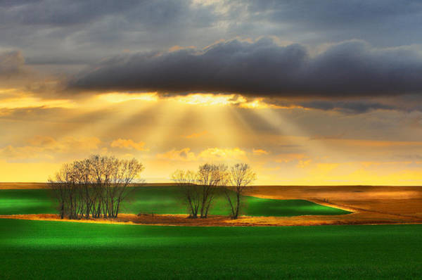 Wall Art - Photograph - The Ray Of Light by Kadek Susanto