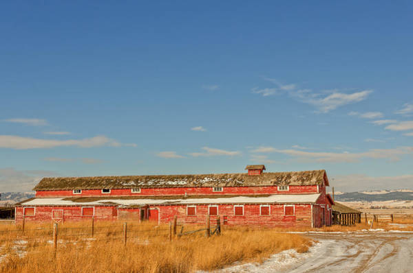 Photograph - The Red Barn by Sue Smith