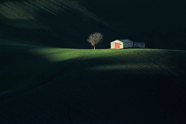 Farmhouse Photograph - The Red Door by Fiorenzo Carozzi