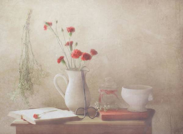Romantic Flower Wall Art - Photograph - The Red Flowers by Delphine Devos