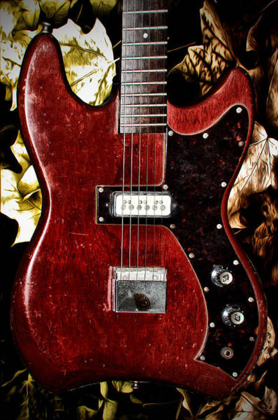 Strat Photograph - The Red Guitar Blues by Bill Cannon