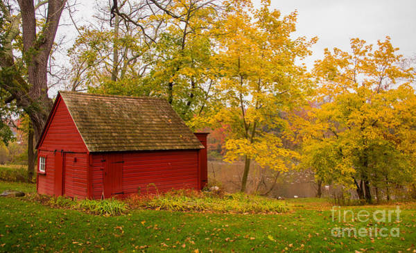 Photograph - The Red Hut by Rima Biswas