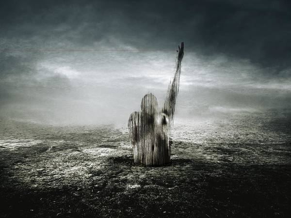 Anguish Photograph - The Red Line by Johan Lilja