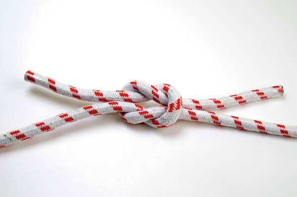 Knot Photograph - The Reef (square) Knot by Photostock-israel/science Photo Library