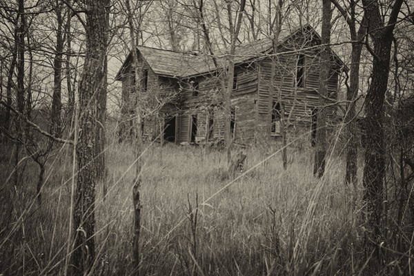 Photograph - The House In The Woods by Mary Lee Dereske