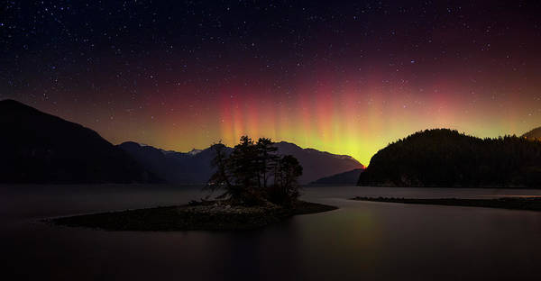 Photograph - The Return Of The Aurora Borealis by Alexis Birkill