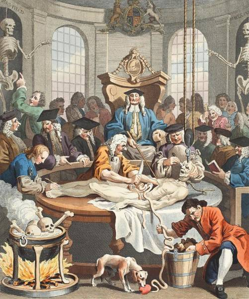 Morality Wall Art - Drawing - The Reward Of Cruelty, From The Four by William Hogarth