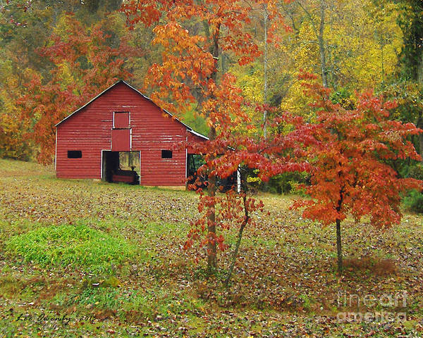 Photograph - The Rice Barn by Lee Owenby