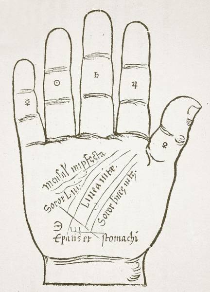 16th Century Wall Art - Drawing - Antique Palmistry Diagram  The Right Hand, Principal Lines by French School