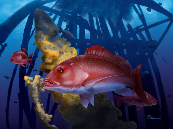 Reef Digital Art - The Rigs by Kevin Putman