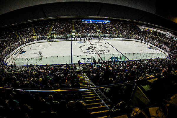 Photograph - The Rink by Dave Hahn