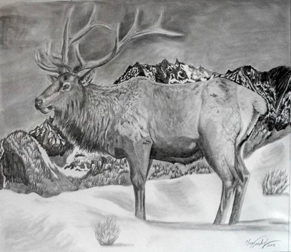 Bugling Drawing - The Rising by Maria Friedrich