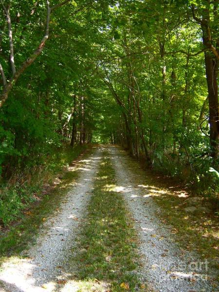 Photograph - The Road Home by Pamela Clements