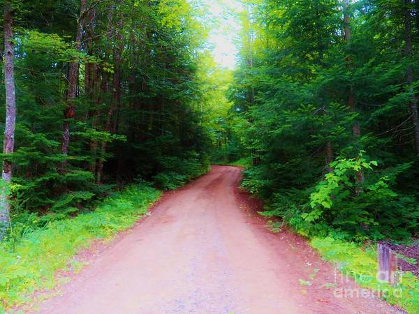 Adirondack Mountains Painting - The Road Less Traveled by Judy Via-Wolff