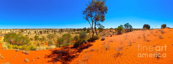 Wall Art - Photograph - The Road To Uluru by Bill  Robinson