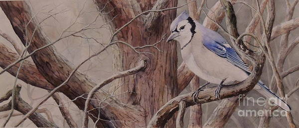 Painting - The Roost Sold by Sandy Brindle
