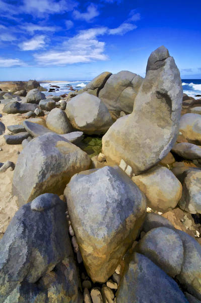 Photograph - The Rough Side Of Aruba IIi by David Letts