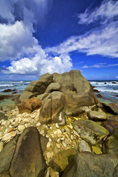 Photograph - The Rough Side Of Aruba Vi by David Letts