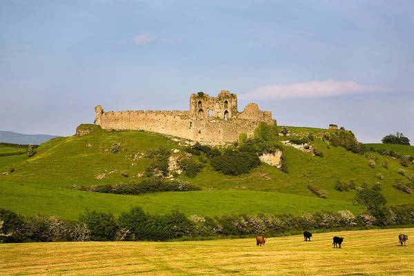 Defensive Photograph - The Ruined Walls Of Roche Castle by Panoramic Images