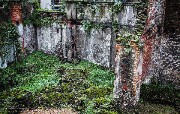 Photograph - The Ruins Of Roman London by Ross Henton