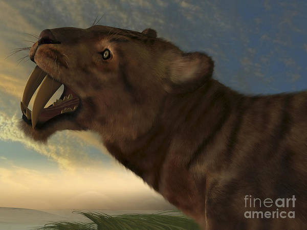 Smilodon Wall Art - Digital Art - The Saber-tooth Cat With Dagger Like by Corey Ford