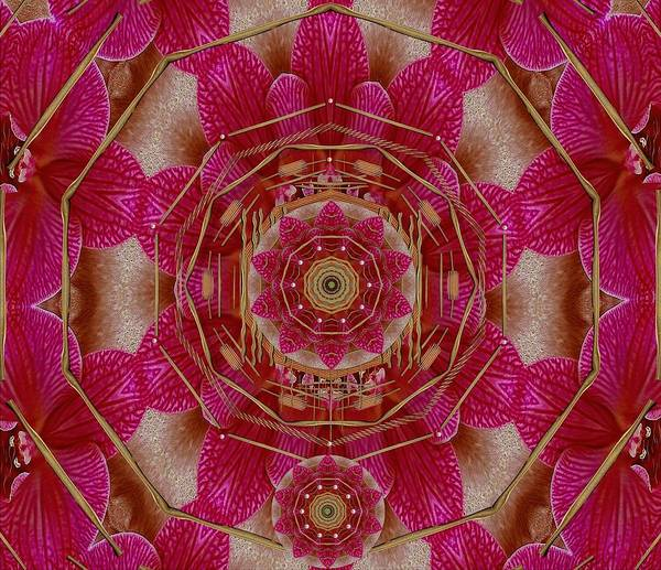 Orchid Mixed Media - The Sacred Orchid Hippie Mandala by Pepita Selles