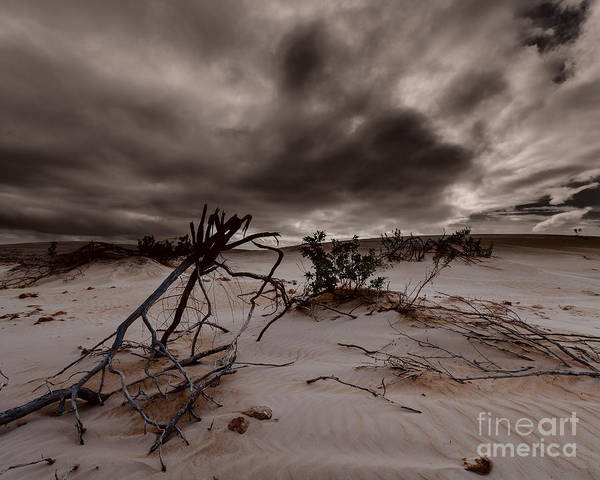 Photograph - The Sands Of Time 4 by Julian Cook