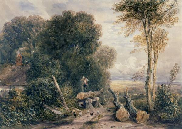 Log Drawing - The Saw Pit by David Cox