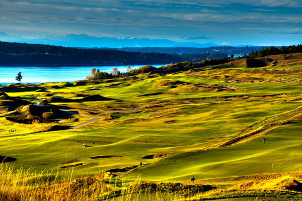 David Patterson Photograph - The Scenic Chambers Bay Golf Course - Location Of The 2015 U.s. Open Tournament by David Patterson